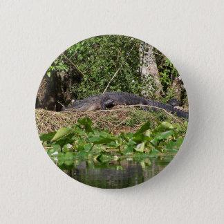 Badge Rond 5 Cm bourdonnement de luv de l'alligator 201a