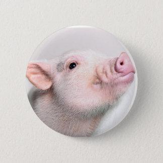 Badge Rond 5 Cm Bouton porcin mignon