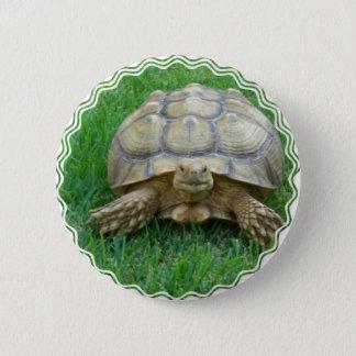 Badge Rond 5 Cm Bouton rond de tortue