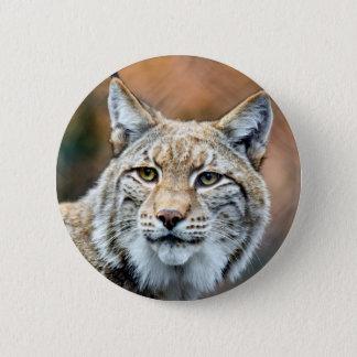 Badge Rond 5 Cm Chat de prédateur de faune de chat sauvage de Lynx