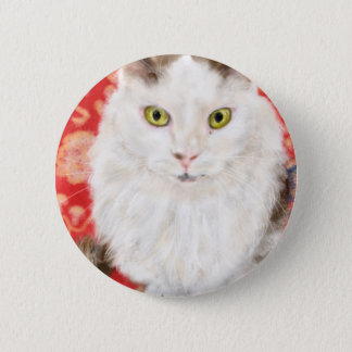 Badge Rond 5 Cm Chat persan sur un tapis de Perse rouge