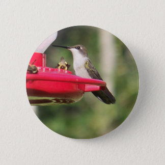 Badge Rond 5 Cm Colibri Throated rouge