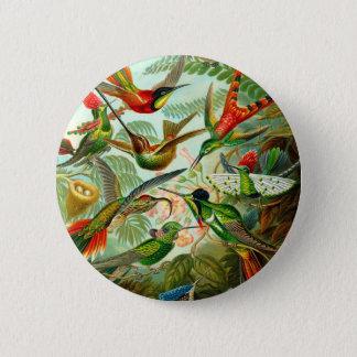 Badge Rond 5 Cm Colibris