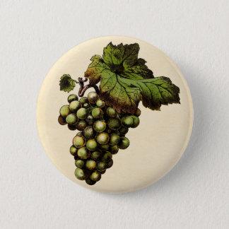 Badge Rond 5 Cm Copie botanique - raisin blanc