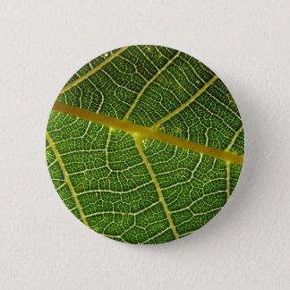 Badge Rond 5 Cm Feuille