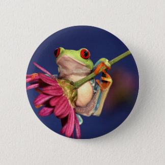 Badge Rond 5 Cm grenouille d'arbre observée par rouge