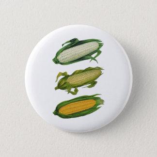 Badge Rond 5 Cm Légumes sains de nourriture vintage, maïs frais