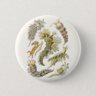Badge Rond 5 Cm Lingots et escargots de mer vintages par Ernst