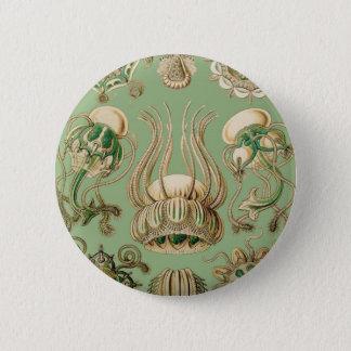 Badge Rond 5 Cm Narcomedusae d'Ernst Haeckel