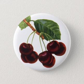 Badge Rond 5 Cm Nourritures vintages de fruit, cerises mûres d'un