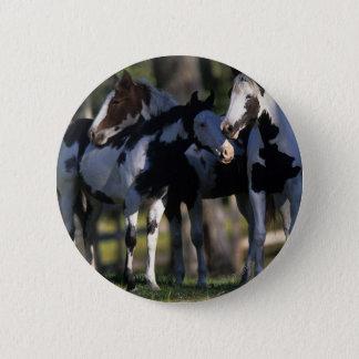 Badge Rond 5 Cm Peignez les chevaux