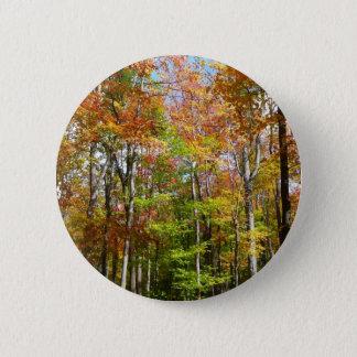 Badge Rond 5 Cm Photographie de paysage d'automne de la forêt II
