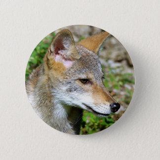 Badge Rond 5 Cm Profil de chiot de coyote