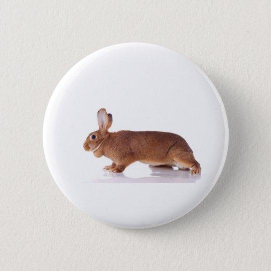 Badge Rond 5 Cm rabbit
