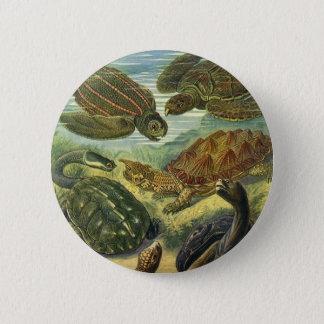 Badge Rond 5 Cm Tortue vintage de terre de tortues de mer par