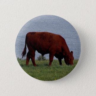Badge Rond 5 Cm vache du sud du Devon sur le littoral à distance