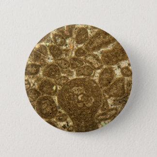 Badge Section mince de chaux paléozoïque sous la MICR