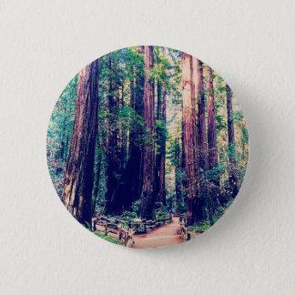 Badge Séquoias de Californie