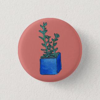 Badge Succulent