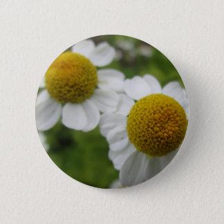 Badge Une paire de marguerite fleurit le bouton