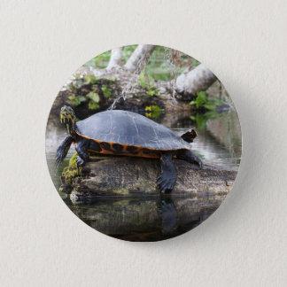 Badges 107a son une vie de tortues