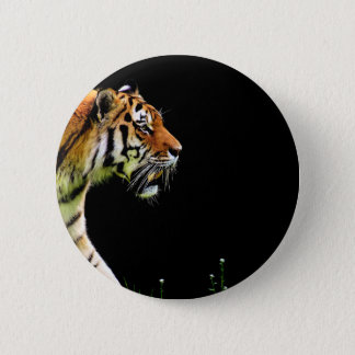 Badges Approche de tigre - illustration d'animal sauvage