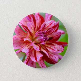 Badges Beauté de dahlia