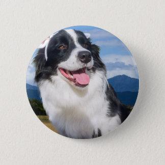 Badges Border collie