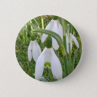 Badges Bouton de perce-neiges