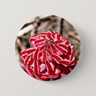 Badges bouton de sarcodes