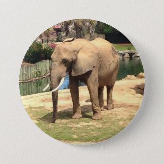 Badges Bouton d'éléphant