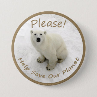 Badges Bouton d'ours blanc