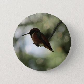 Badges Bouton du colibri d'Allen