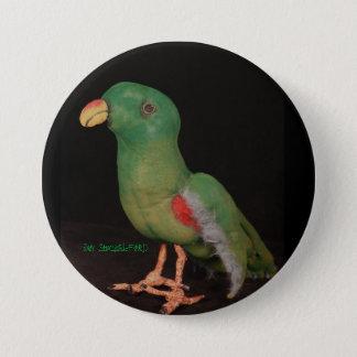 Badges Bouton Electus de perroquet de janv. Shackelford