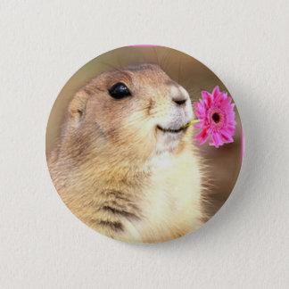 Badges Bouton rond de chien de prairie