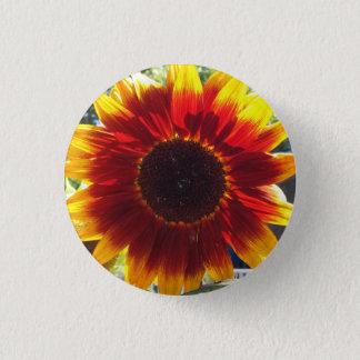 Badges Bouton rouge et jaune vibrant de photo de