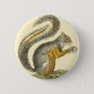 Badges Bouton vintage d'écureuil