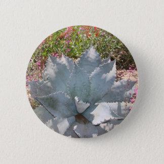 Badges Cactus bleu