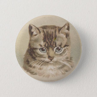 Badges Chat tigré vintage