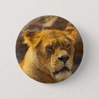Badges Close_Up_Tiger.jpg