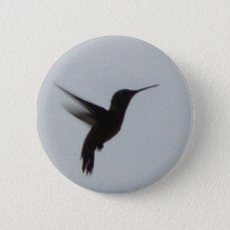 Badges Colibri au crépuscule