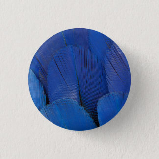 Badges Conception bleue de plume d'ara de jacinthe