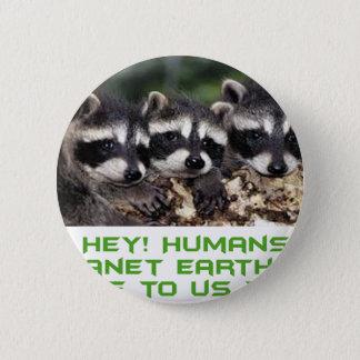Badges conceptions fraîches de raton laveur