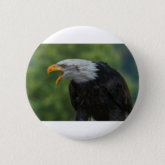 Badges Eagle noir blanc pendant la journée