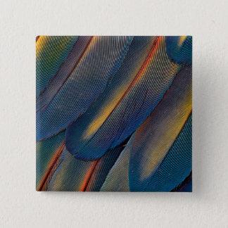 Badges Éventées plumes d'ara d'écarlate