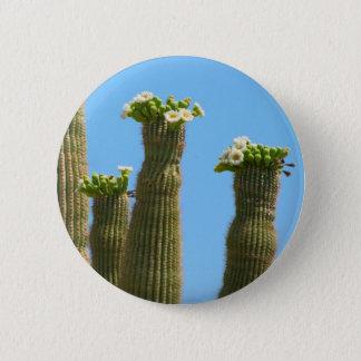 Badges Fleurs de cactus de Saguaro
