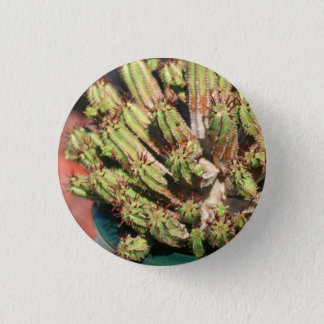Badges Goupille de Spikey