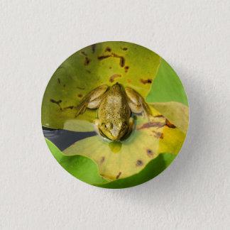 Badges Grenouille sur le bouton de protections de lis