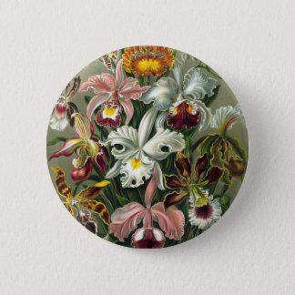 Badges Illustration vintage d'orchidées