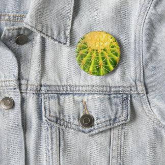 Badges Insigne de cactus